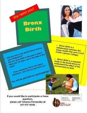 South Bronx Study