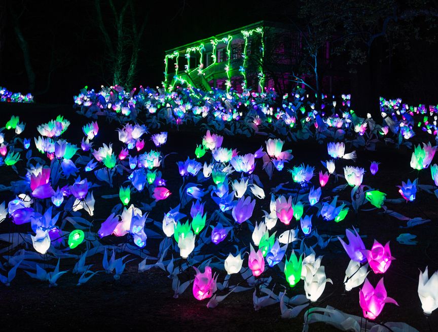 Nearby: Lightscapes at Van Cortlandt Manor