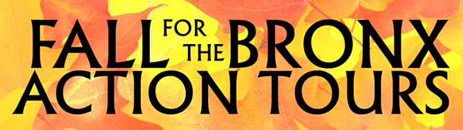 Fall for the Bronx Action Tours