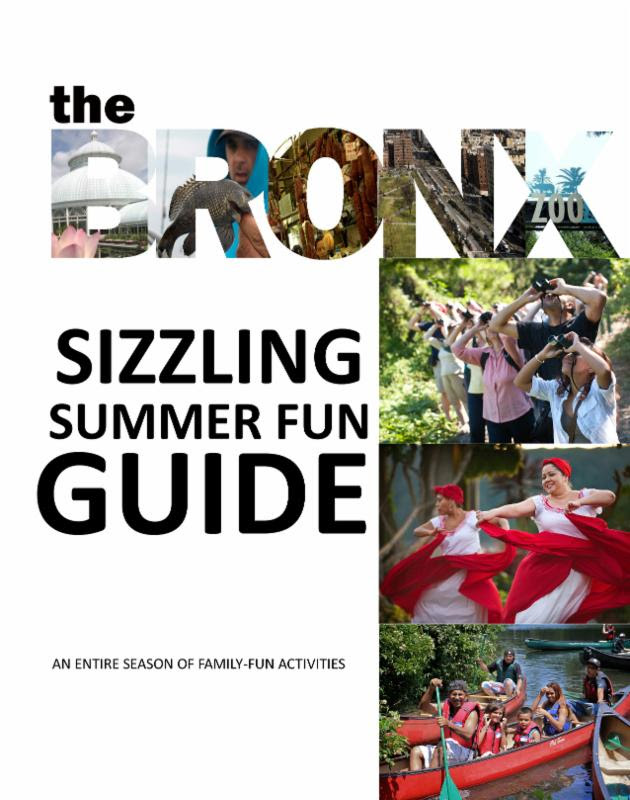 Summer Guide from I Love the Bronx