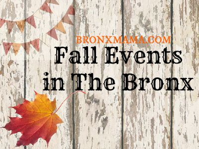 Fall Events in the Bronx