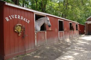 van_cortlandt_stables