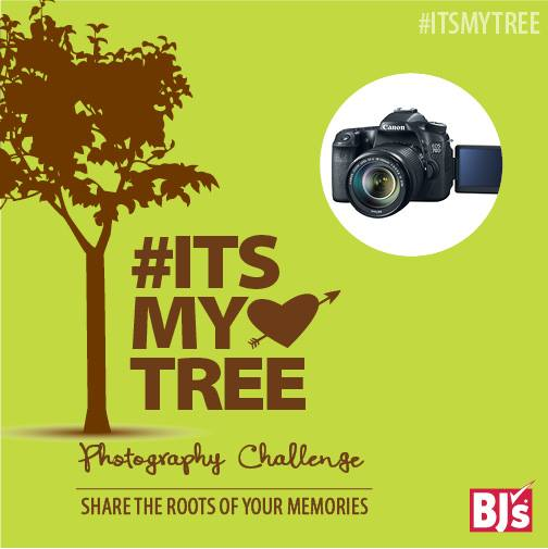 BJ's Teams Up with Arbor Day Foundation & Launches #ItsMyTree Photo Contest