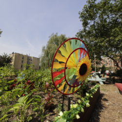 Timberland Helps Restore Bronx Community Garden