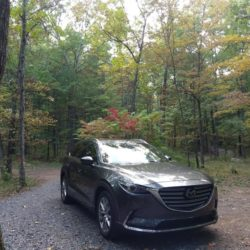 Birthday Week in the 2016 Mazda CX-9 Signature AWD