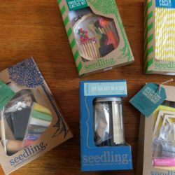 Crafting with Seedling