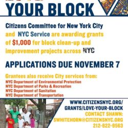 "2017 ""Love Your Block"" Grant Deadline Ending Soon"