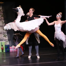Ballerina Swan and the Nutcracker