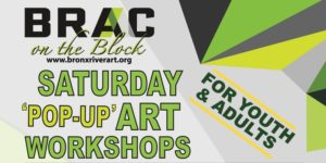 Bronx River Art Center Pop Up Workshop