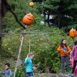 Scarecrows & Pumpkins in the Adventure Garden