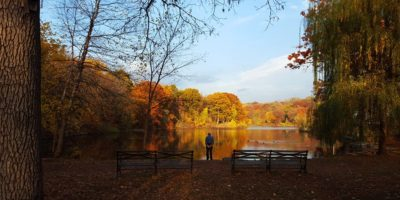 8 Places to Enjoy Fall Foliage in the Bronx