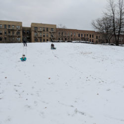 Best Places for Sledding in the Bronx