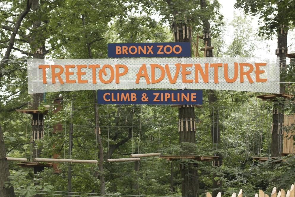 Treetop Adventure Opens At The Bronx Zoo Bronxmama