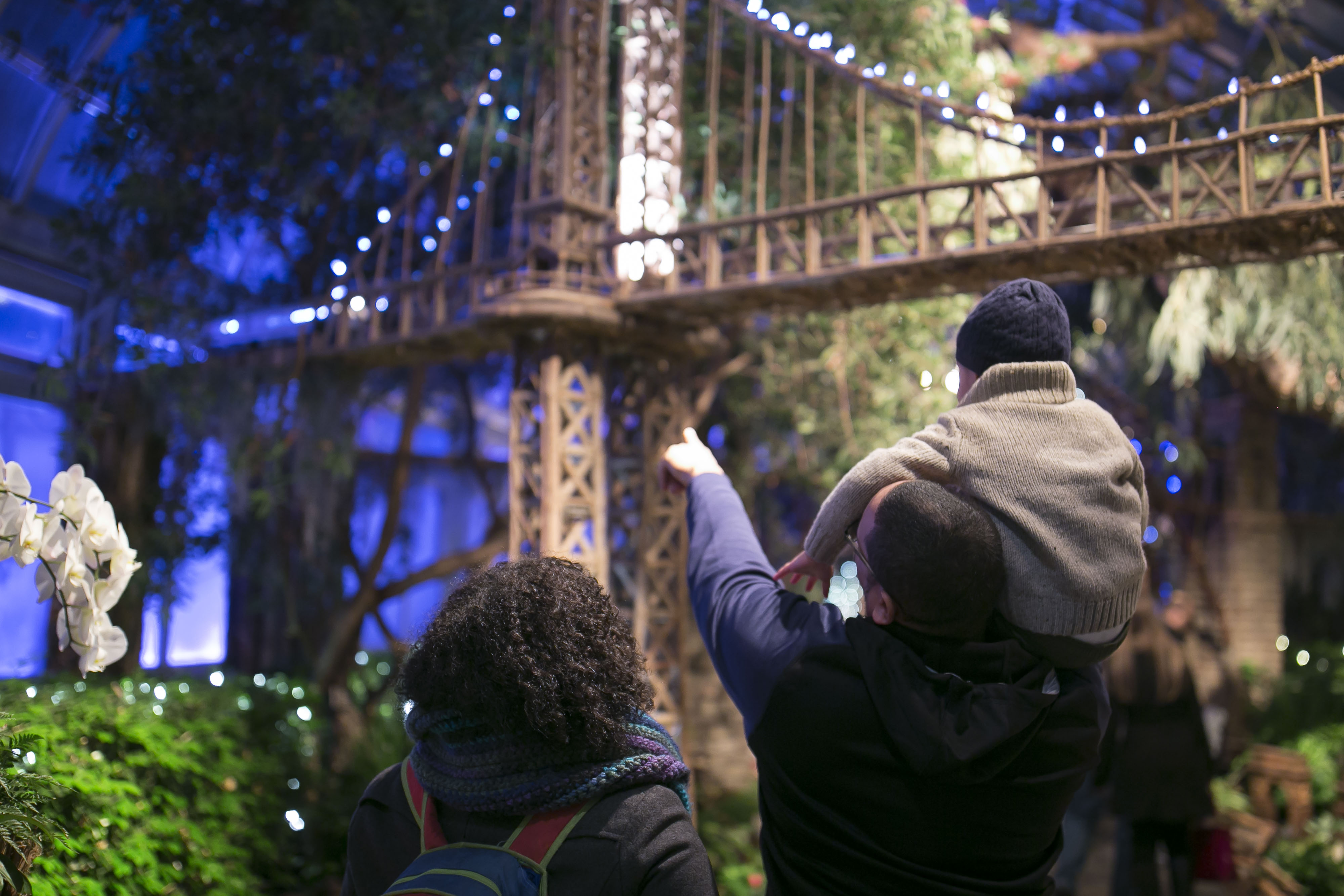 Nybg holiday train show ticket giveaway discount code - New york botanical garden promo code ...